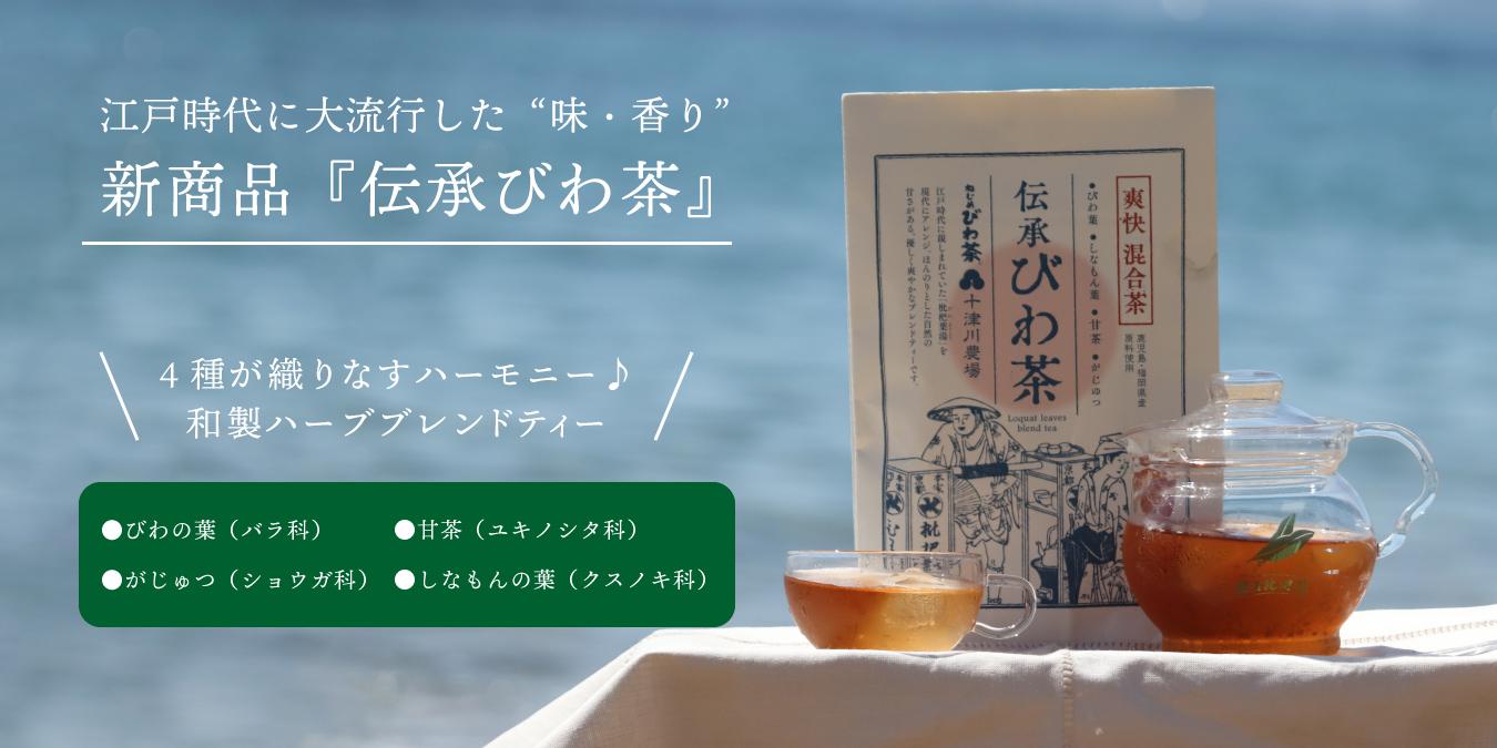 江戸時代に大流行した味、香り『伝承びわ茶』